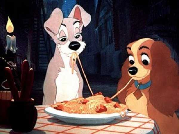Are Noodles Good For Your Dog